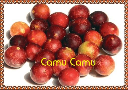 Le camu-camu: le fruit super-puissant d'Amazonie