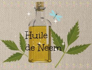 L'huile de Neem: un insecticide puissant