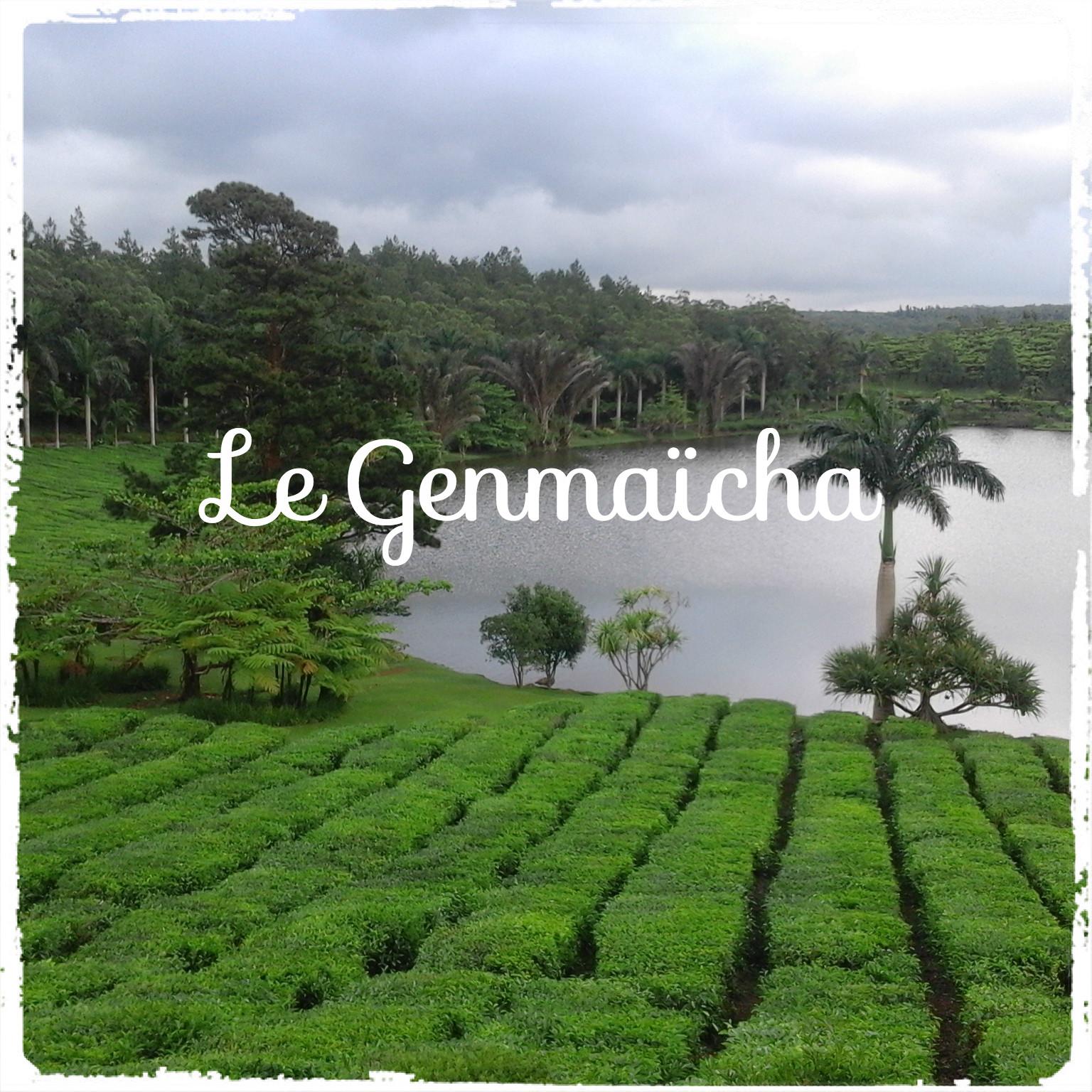 Le Genmaïcha thé vert